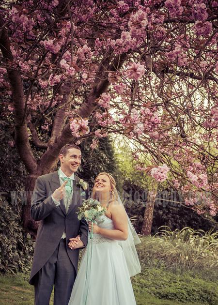 Wedding under cherry blossoms / Wedding couple / Amazing wedding photos surrey wedding photographer blue