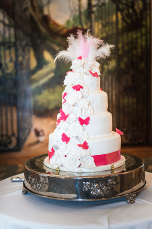 Surrey Wedding Photographer, Surrey Wedding Venue, Coulsdon Manor, Wedding Cake
