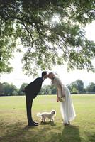 York House Twickenham Registry Office, London Wedding Venue, London Wedding Photographer, Bride and Groom